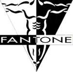 What is Fantone Fitness?